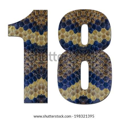 Model snake eighteen