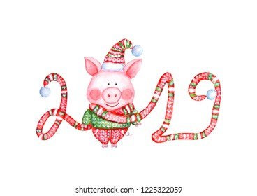 2019 Happy New Year illustration with watercolor pig in knitted sweater, pants, hat and long lettering scarf isolated on white background. Chinese New Year of the Pig. For Christmas greeting cards.