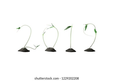 2019 plants growth background - 3d rendering