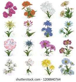 2d illustration. Decorative isolated flower image. Floral Illustration. Vintage botanic artwork. Hand made drawing. Single flower. Flower set.