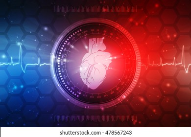 2d illustration Human Heart - Anatomy of Human Heart