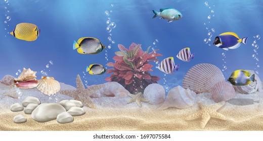 Aquarium Wallpaper Hd Stock Images Shutterstock