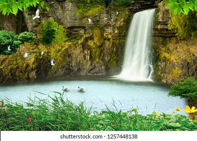 3d background wallpaper design with natural objects and waterfall for mural