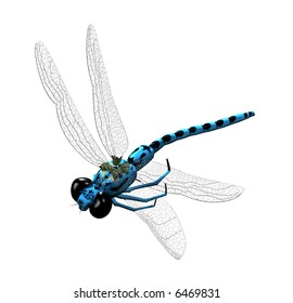 3D blue dragonfly with transparent wings and big eyes