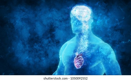 3d brain and heart representing  emotional intelligence