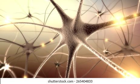 3D. Brain, Nerve Cell, Human Nervous System.