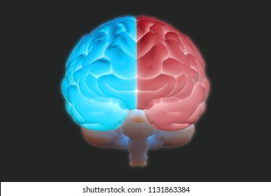 3D brain rendering illustration in front view with left and right function and activity concept glowing isolated on dark background with clipping path for die cut to use in any backdrop