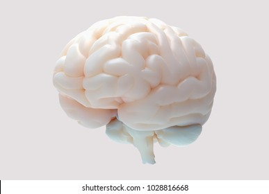 3D brain rendering illustration in perspective view with balloon material isolated on bright pastel background with clipping path for die cut to use in any backdrop