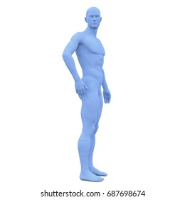 3D CG rendering of a male body