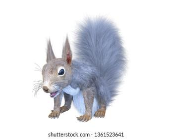 3D CG rendering of squirrel