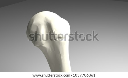 3 D Computer Render Human Humeral Head Stock Illustration 1037706361 ...