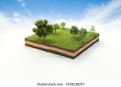 3D cubical garden grass land with trees, soil geology cross section, 3D Illustration ground ecology isolated on blue sky