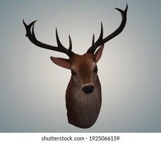 3D deer head illustration on blue background.