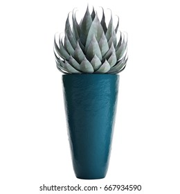 3D digital render of agave isolated on white background