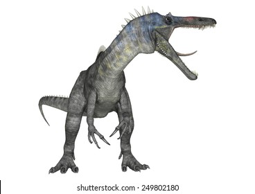 3D digital render of an aggressive dinosaur Suchomimus or Suchomimus tenerensis isolated on white background