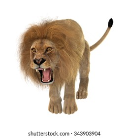 Lion Attack Images Stock Photos Vectors Shutterstock