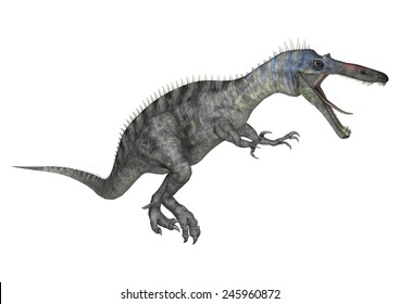 3D digital render of a hunting dinosaur Suchomimus or Suchomimus tenerensis isolated on white background
