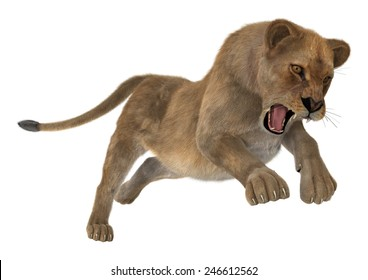3D digital render of a hunting female lion isolated on white background