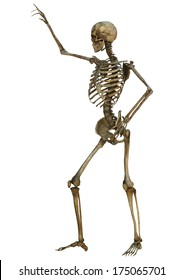 3D digital render of an old human male skeleton isolated on white background