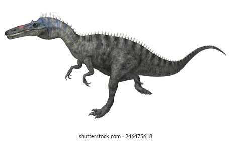 3D digital render of a running dinosaur Suchomimus or Suchomimus tenerensis isolated on white background