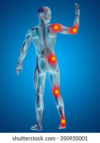 3D human or man with muscles for anatomy or health designs with articular or bones pain. A male on blue background for medical, fitness, medicine, bone, care, hurt, osteoporosis arthritis or body
