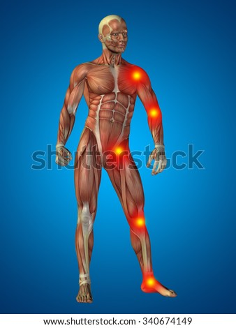 3 D Human Man Muscles Anatomy Health Stock Illustration 340674149