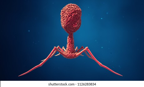 3d illlustration Bacteriophage virus