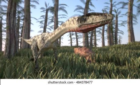 3d illustration of alluring coelophysis dinosaur