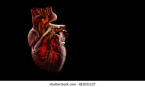 Hearts On The Black Background Images Stock Photos