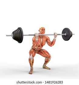 3D Illustration of a athlete with a barbell with muscle maps isolated on white background