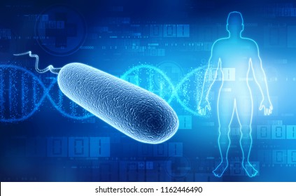 3D illustration of bacteria Escherichia coli, E coli Bacteria on medical technology background