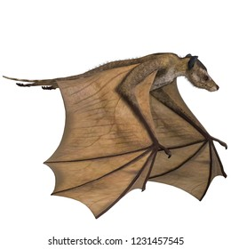 3D illustration of a bat dinosaur icaronycteris over white