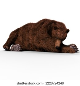 3D illustration of a brown bear ursus arctos over white