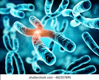 3d illustration of Chromosomes