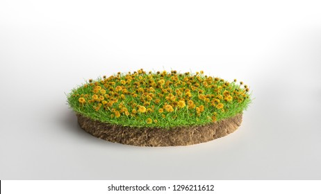 3d illustration of cross section of ground with grass and flowers isolated on white