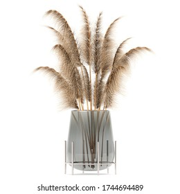 3d illustration of decorative dried flowers in a vase of reeds on white background