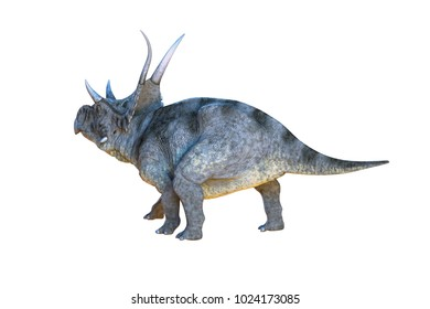 3D Illustration of the Diceratops dinosaur on white background