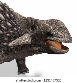 3D illustration of a dinosaur ankylosaurus over white