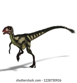 3D illustration of a dinosaur dilong over white