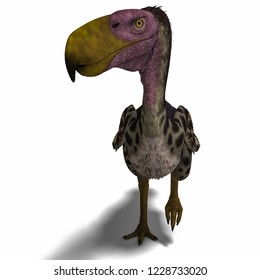 3D illustration of a dinosaur terror bird kelenken over white