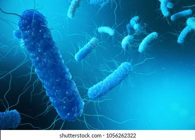 3D illustration Enterobacterias. Gram negativas Proteobacteria, bacteria such as salmonella, escherichia coli, yersinia pestis, klebsiella