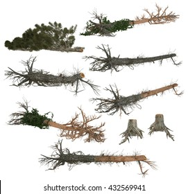 3D illustration of fallen trees and stumps isolated