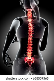 3d illustration - Female run and X-ray Spine position, medical concept.