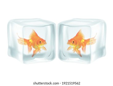 3D illustration of a Frozen Goldfish in an Ice cubes Global Warming Extreme Weather, This is not a real fish but a a 3d Rendering and 3D Design to bring awareness to global warming in Texas