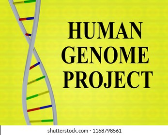 3D illustration of HUMAN GENOME PROJECT script with DNA double helix , isolated on colored background.