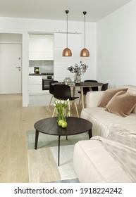 3D illustration - Interior design of two apartments