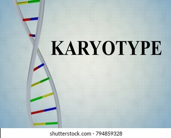 3D illustration of KARYOTYPE script with DNA double helix , isolated on pale blue background.