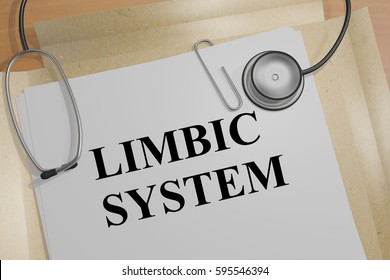 "3D illustration of ""LIMBIC SYSTEM"" title on a medical document"