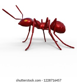 3D illustration of an metallic ant over white