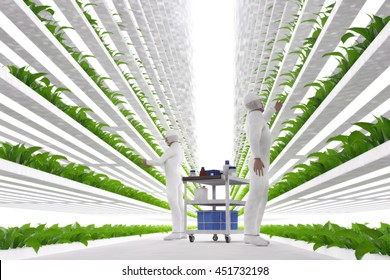 3D illustration of a modern vertical farming system and its employees taking care of plants. Plant food production in vertically stacked layers.